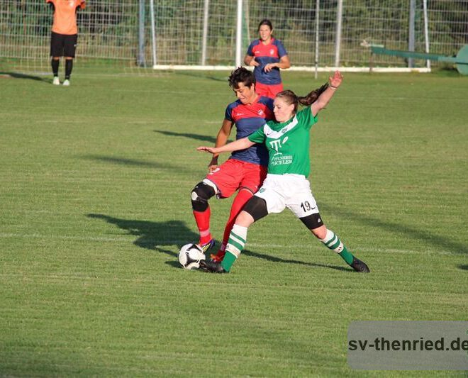 SV Thenried - 1. FC Viktoria Pilsen 22.08.2013 029m