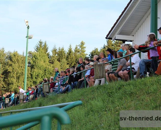SV Thenried - 1. FC Viktoria Pilsen 22.08.2013 035m