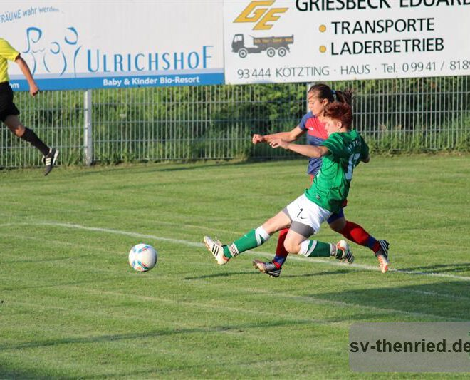 SV Thenried - 1. FC Viktoria Pilsen 22.08.2013 043m