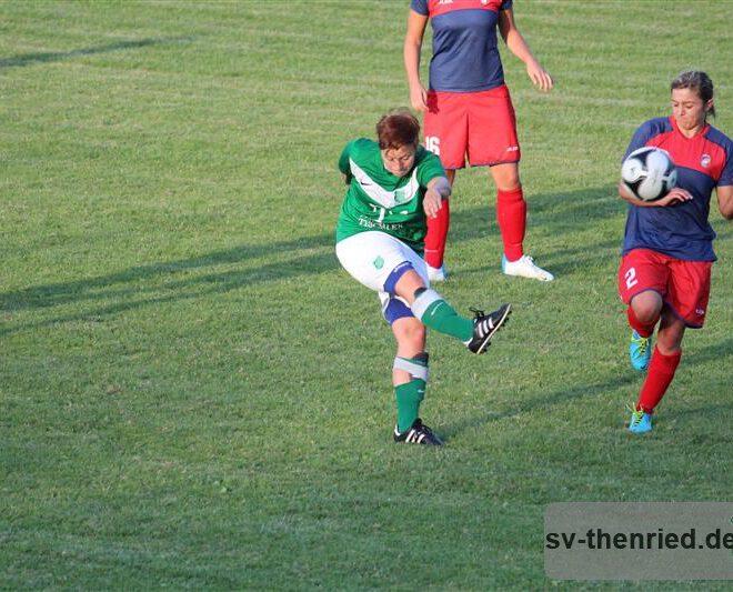 SV Thenried - 1. FC Viktoria Pilsen 22.08.2013 070m