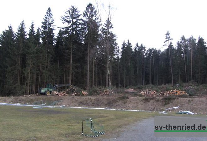 Sportplatz 09.03.2012 006m